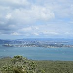 View from Rangitoto summit