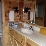  Hootenanny Cabin bathroom