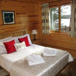 Arctic Skua - Bedroom with a view