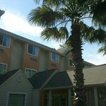 Φωτογραφία: Microtel Inn & Suites by Wyndham Tallahassee