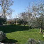 Photo de Country House Ponte Caldaro