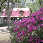 Log Inn and Azaleas