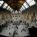 Aquatic and Natural History Museum
