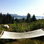 Rest, relax, read or chat in our hammock