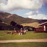 Colville Farm Holidays Horse Trekking