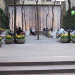 Paley Park - a pocket park