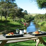  Picnic by the Waitangi River