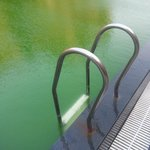 Green pool - Algae - No Chemicals?