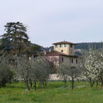  the villa