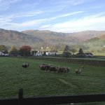 View back towards grasmere