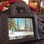 Glennallen's Rustic Resort Bed & Breakfast Foto