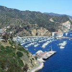 Santa Catalina Boat Tours Day Tours