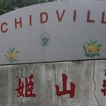 Orchidville