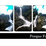 Pongas Falls