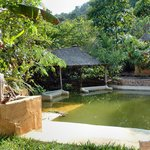  Jasmine Valley Eco-Resort pool