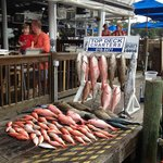 Top Deck Fishing Charters