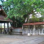 Janardhanaswamy Temple