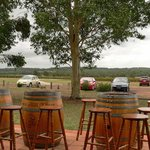 Photo of Ernest Hill Wines