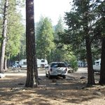 Parking Spot Upper Pines Campground Site #113