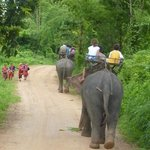 Chiang Mai Daily Travel - Day Tours