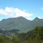 Borneo Trekker - Private Day Tours