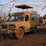 Bethel Tours One Day Tsavo East Tour