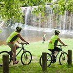 Gisborne Cycle Tour Company