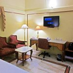 Hotel Raj Park - TV, Luggage