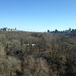 View of Central Park from Park View room