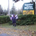 Napanee Motelの写真