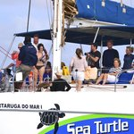 Sea Turtle Sailing Catamarans