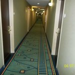 Springhill Suites by Marriott Savannah Midtown Foto