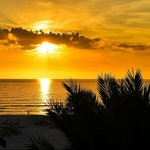 Hyatt Siesta Key Beach Resort, A Hyatt Residence Clubの写真