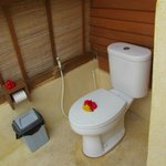 The outdoor toilet...