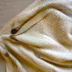 Towel after wiping moldy shower walls, Room 206