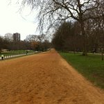 """Rotten Row"" in Hyde Park"