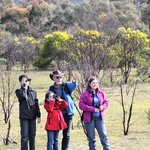 Echidna Walkabout - Private Day Tours