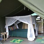 interior of one of the tent