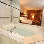  Whirlpool Guest Room
