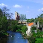 Helmsley Up River