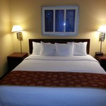 Φωτογραφία: SpringHill Suites Baltimore BWI Airport