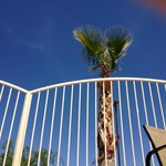 Φωτογραφία: Staybridge Suites Tucson Airport