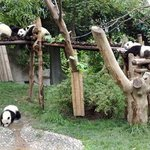 Ji'nan Wildlife Park