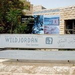  Wild Jordan Cafe