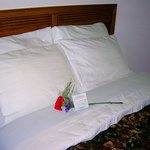  Grand Beach Inn Old Orchard MEPillows