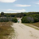  Path to beach from Greyfield