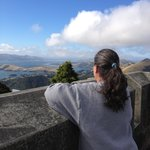  View from the top of Larnach Castle