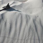 Snaketracks - Mesquite Flat Sand Dunes - Death Valley NP