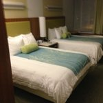 SpringHill Suites Philadelphia Airport/Ridley Park의 사진