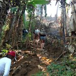 Jungle Trek - very steep